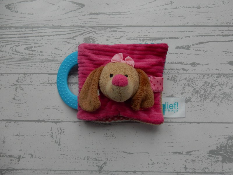 Lief! Lifestyle activiteitenboekje velours roze bruin blauw hond Daisy